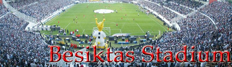 TURKISH SPORTOTO SUPER LEAGUE 2014 - 2015